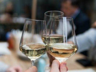 Weingläser - Weinverkostung